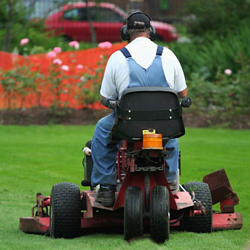 5 Tips for Better Lawn Mower and Lawn Care