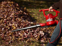 Choosing a Leaf Blower: Gas, Electric, or Cordless?