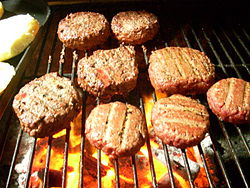The Basics of Grilling: Knowing When to Use Hot or Low Temperatures